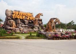 Du lịch Thái Lan: Hà Nội – Bangkok – Pattaya 5 ngày Bay Nok Air