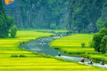 Hà Nội – Hoa Lư – Tam Cốc – 01 ngày