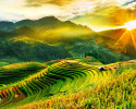 Mù Cang Chải – Tú Lệ – Khau Phạ – Bảo Hà0